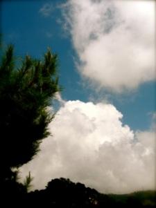 pretty sky today amidst the mad scramble